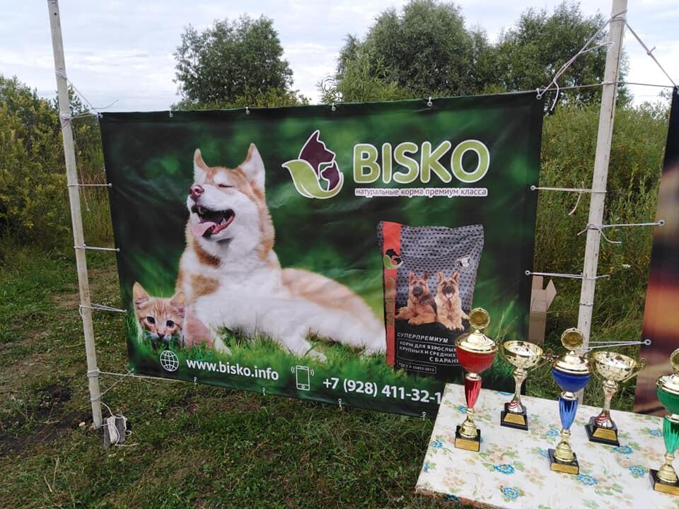 Спонсор БИСКО